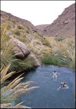 Geotermalne baseniki