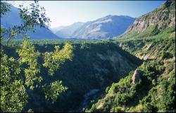 Rio de Los Cipresses