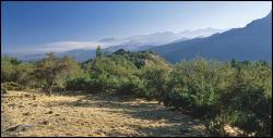 Rezerwat Rio de Los Cipresses i okolice