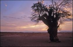 Zachód słońca na pustyni Atacama